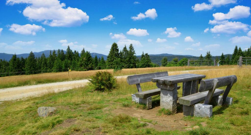 Nationalpark Bayerischer Wald_AdobeStock_360382068